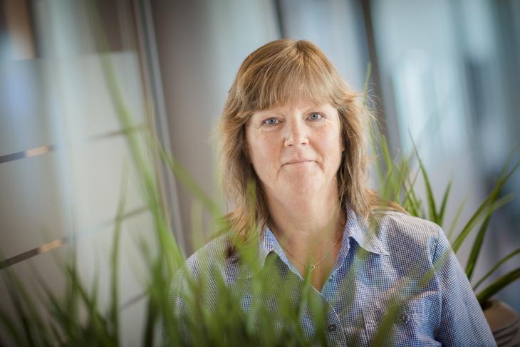 MEKLING I NRK: Lise Olsen, nestleder i LO Stat og forhandlingsleder.